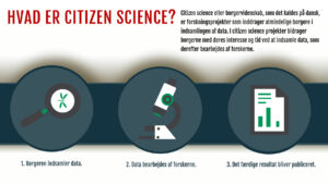 Infographic om citizen science